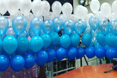 Balloon-Wall