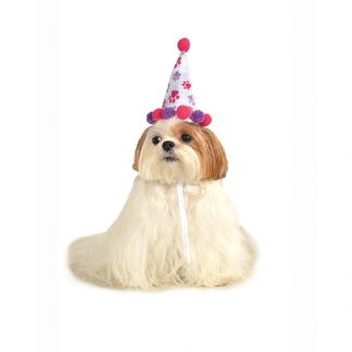 Girl Pet Birthday Hat