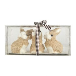 Bunny In PVC Box